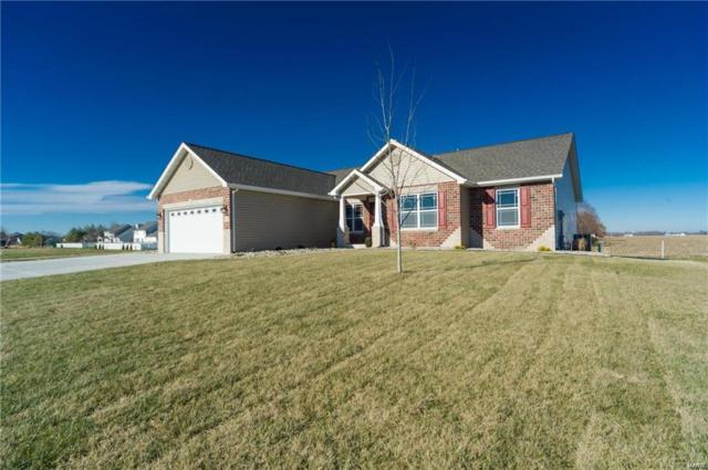 9713 Quapaw Court, Mascoutah, IL 62258 (#18042267) :: RE/MAX Professional Realty