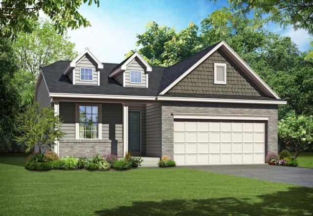 151 Noahs Mill Drive, Lake St Louis, MO 63367 (#18042383) :: Sue Martin Team