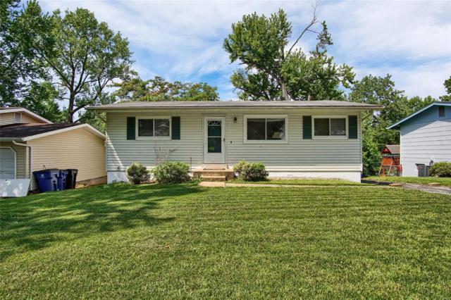 500 Golden Valley, St Louis, MO 63129 (#18043988) :: PalmerHouse Properties LLC