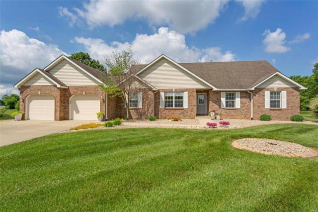 3630 Sweet Briar Lane, Columbia, IL 62236 (#18044155) :: Fusion Realty, LLC