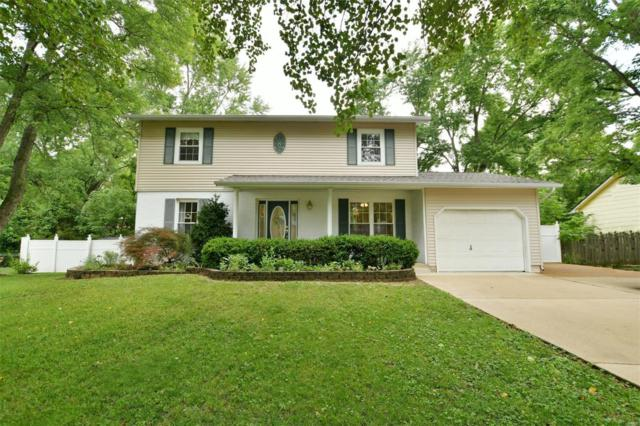 5915 Brouk Valley Drive, House Springs, MO 63051 (#18044974) :: Clarity Street Realty