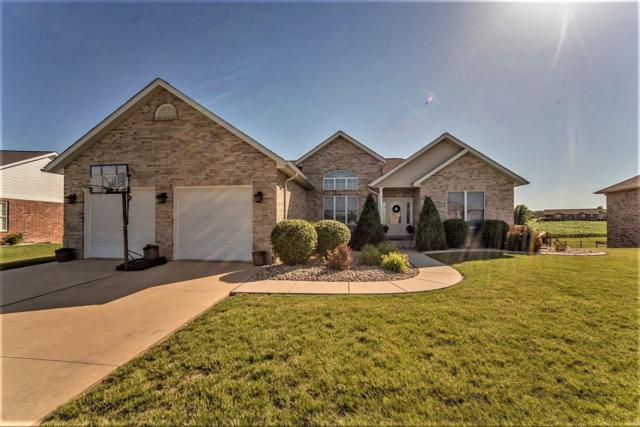 413 Traver Tine Circle, Millstadt, IL 62260 (#18045555) :: Sue Martin Team