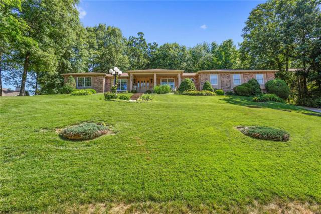 6343 Bluff Forest Drive, Oakville, MO 63129 (#18046852) :: PalmerHouse Properties LLC