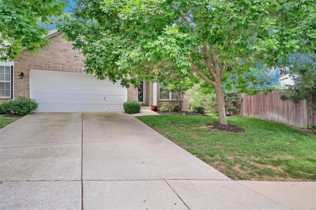 1347 Parkview Estates Drive, Ellisville, MO 63021 (#18047013) :: The Becky O'Neill Power Home Selling Team