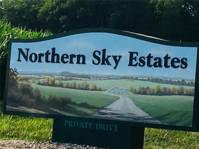 19 Northern Sky, Washington, MO 63090 (#18047421) :: PalmerHouse Properties LLC