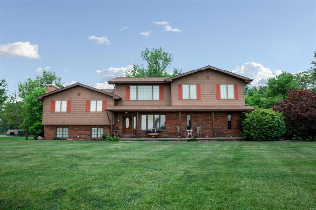 10102 Goodings Ford Road, BREESE, IL 62230 (#18048214) :: Fusion Realty, LLC