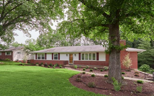 4851 Chapel Hill, St Louis, MO 63128 (#18048403) :: Clarity Street Realty