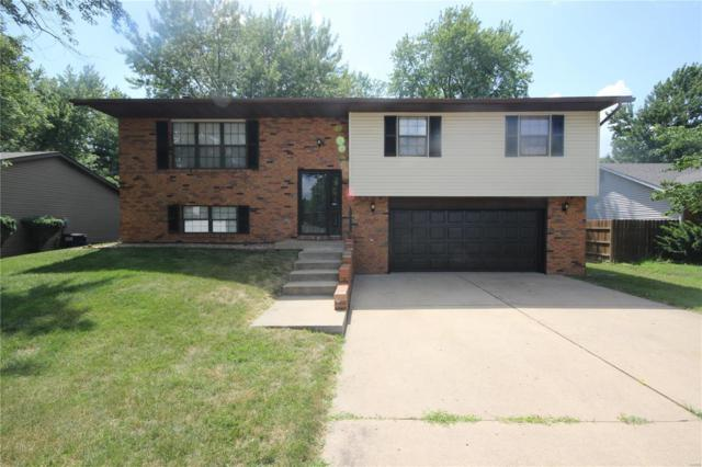 525 Lenora Drive, Fairview Heights, IL 62208 (#18049742) :: Fusion Realty, LLC