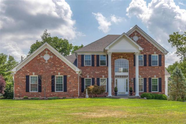 549 Claymont Place Drive, Ballwin, MO 63011 (#18049754) :: RE/MAX Vision