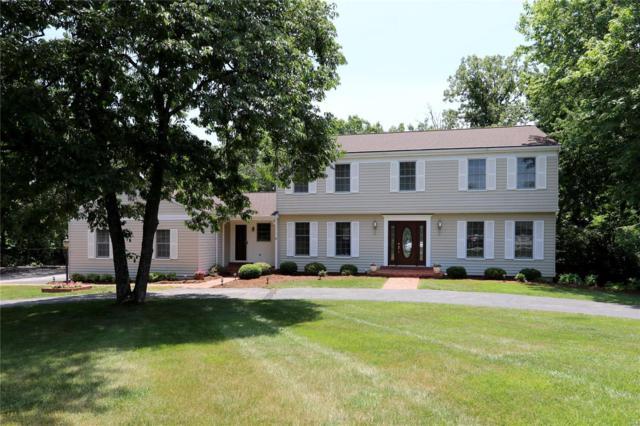1135 Briar Patch Road, Ellisville, MO 63021 (#18050044) :: PalmerHouse Properties LLC