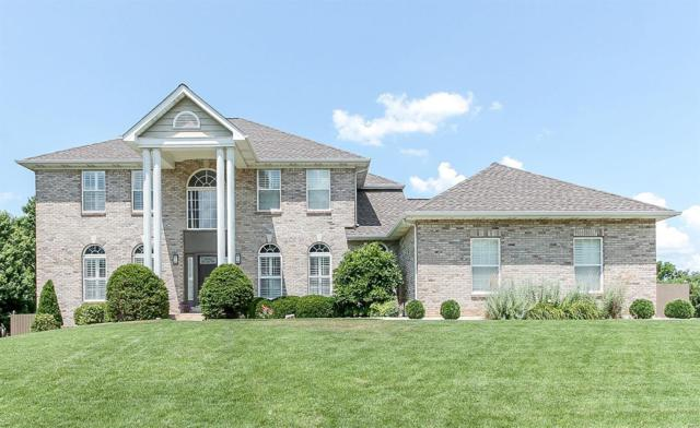 653 Clifden Drive, Weldon Spring, MO 63304 (#18050097) :: St. Louis Finest Homes Realty Group