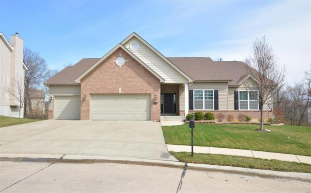 218 Country Vista, Lake St Louis, MO 63367 (#18050154) :: St. Louis Finest Homes Realty Group
