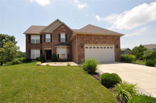 353 Elizabeth Drive, Columbia, IL 62236 (#18052437) :: Holden Realty Group - RE/MAX Preferred