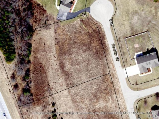 3807 Dorothy Hills Drive, Festus, MO 63028 (#18053386) :: Walker Real Estate Team