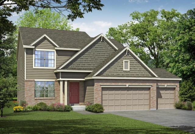 366 Cottage Grove Drive, Wentzville, MO 63385 (#18053535) :: Kelly Hager Group | TdD Premier Real Estate