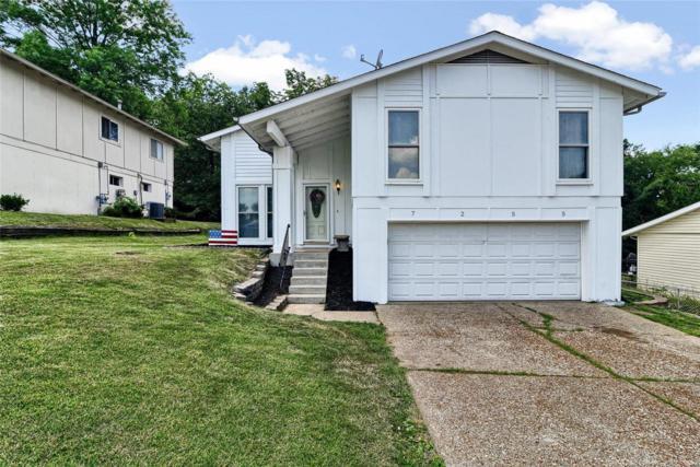 7255 Meriwether Court, Barnhart, MO 63012 (#18054271) :: PalmerHouse Properties LLC