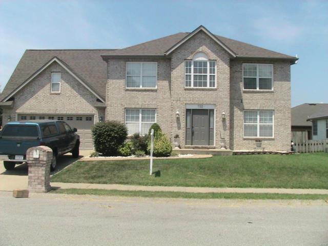 722 Donna Drive, O'Fallon, IL 62269 (#18054879) :: PalmerHouse Properties LLC