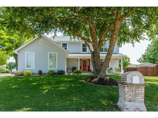 1256 Orion Way, Saint Peters, MO 63376 (#18054885) :: Kelly Hager Group | TdD Premier Real Estate