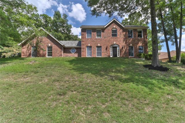 1955 Still Creek Pass, Wildwood, MO 63011 (#18055726) :: The Kathy Helbig Group