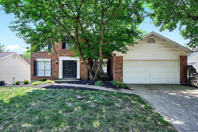 16546 Branchwood Drive, Wildwood, MO 63011 (#18055761) :: Barrett Realty Group