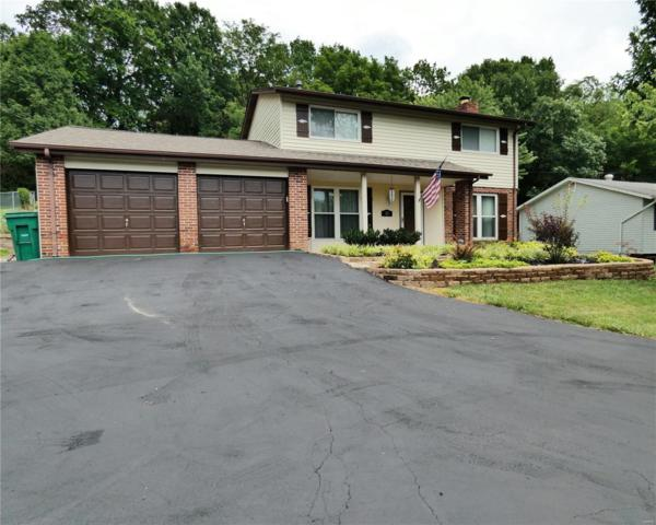 53 E Lakewood Drive, Fenton, MO 63026 (#18056592) :: RE/MAX Vision