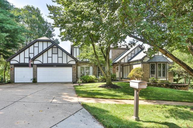 338 Turnberry Place Drive, Wildwood, MO 63011 (#18056973) :: Kelly Hager Group | TdD Premier Real Estate
