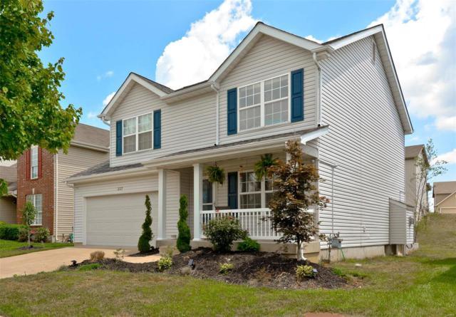 227 Spring Borough Drive, O'Fallon, MO 63368 (#18057702) :: Kelly Hager Group | TdD Premier Real Estate