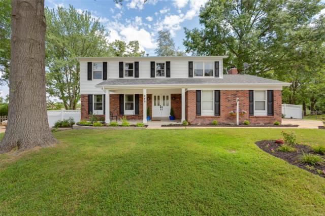 249 Ranchmoor Trail, Ellisville, MO 63011 (#18057855) :: The Kathy Helbig Group