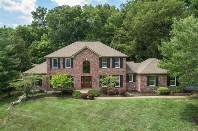 16857 Kehrsbrooke Court, Chesterfield, MO 63005 (#18059282) :: RE/MAX Vision