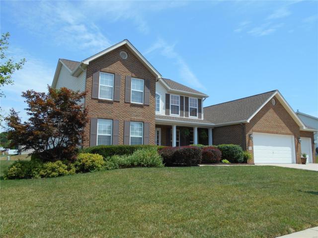 3247 Roan Hill Drive, Belleville, IL 62221 (#18060312) :: Walker Real Estate Team