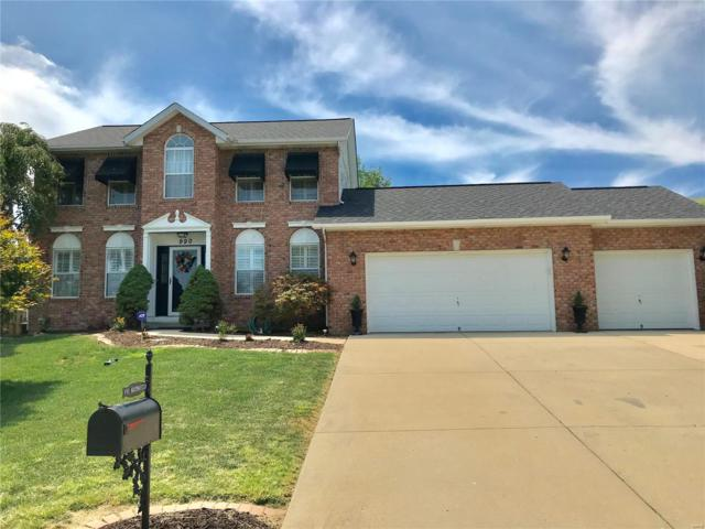 990 Northwestern Avenue, Fairview Heights, IL 62208 (#18061050) :: Clarity Street Realty