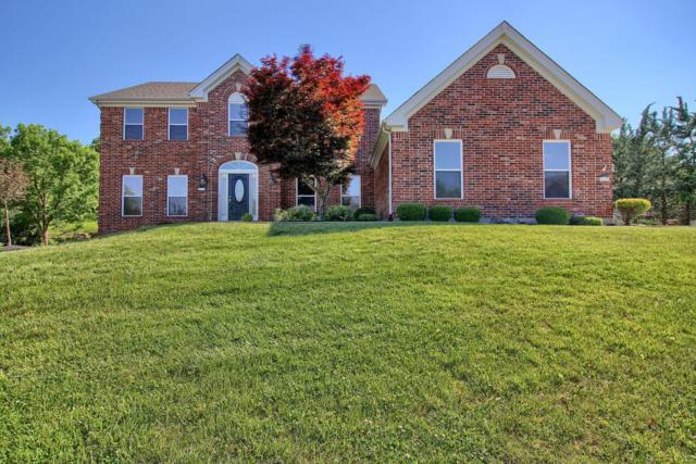 530 Overlook Terrace, Eureka, MO 63025 (#18062234) :: PalmerHouse Properties LLC
