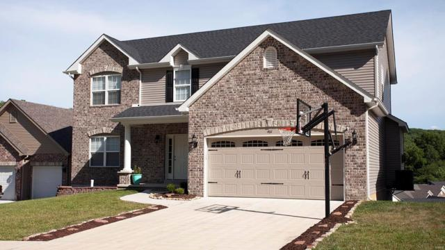 461 Amber Lakes Court, Imperial, MO 63052 (#18062713) :: Clarity Street Realty