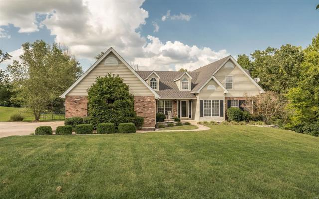 312 Meadow Brook Estates Lane, Wentzville, MO 63385 (#18063695) :: Kelly Hager Group | TdD Premier Real Estate