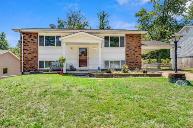 12036 Glenpark Drive, Maryland Heights, MO 63043 (#18063899) :: St. Louis Finest Homes Realty Group
