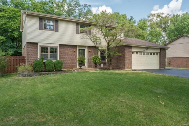 293 Amber Jack Drive, Ballwin, MO 63021 (#18064256) :: St. Louis Finest Homes Realty Group