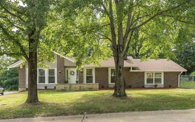 303 Renaldo, Chesterfield, MO 63017 (#18064539) :: St. Louis Finest Homes Realty Group