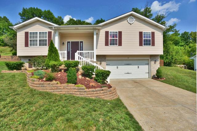 107 Winter Valley Drive, Fenton, MO 63026 (#18065542) :: The Becky O'Neill Power Home Selling Team