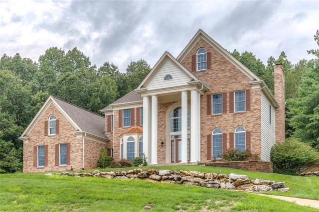 17618 Ailanthus Drive, Wildwood, MO 63005 (#18065818) :: Clarity Street Realty