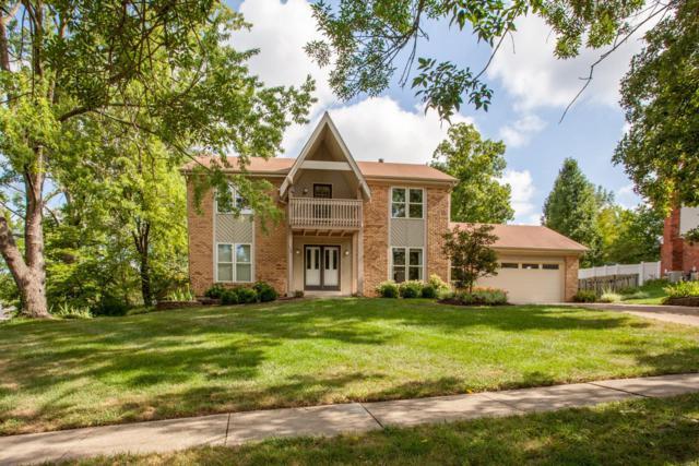 198 Spring Oaks Drive, Ballwin, MO 63011 (#18066541) :: Sue Martin Team