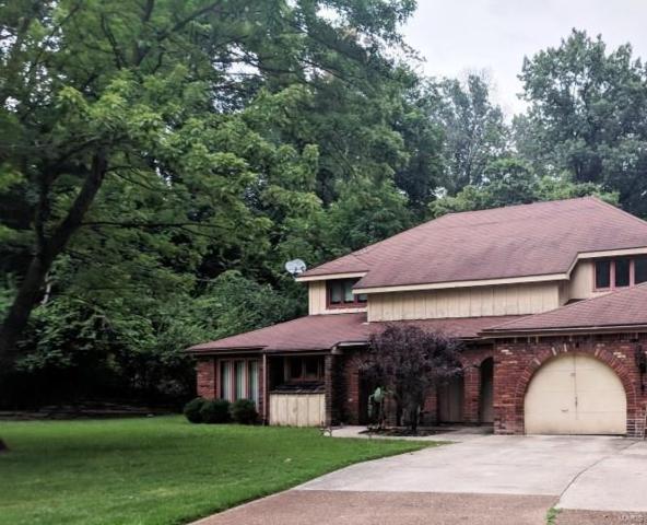 49 Nottingham Lane, Belleville, IL 62223 (#18066838) :: Fusion Realty, LLC
