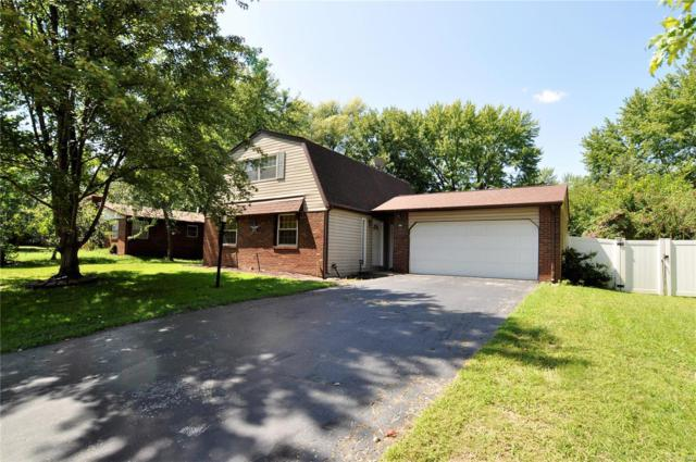 301 Saint John Drive, Belleville, IL 62221 (#18070286) :: Fusion Realty, LLC