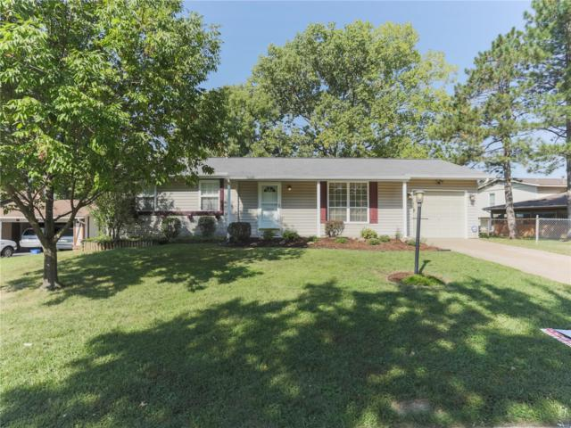25 Edgemont Road, Saint Peters, MO 63376 (#18072112) :: The Kathy Helbig Group