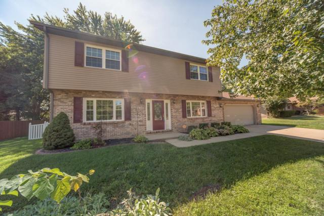 117 Brian Drive, Swansea, IL 62226 (#18073048) :: Clarity Street Realty