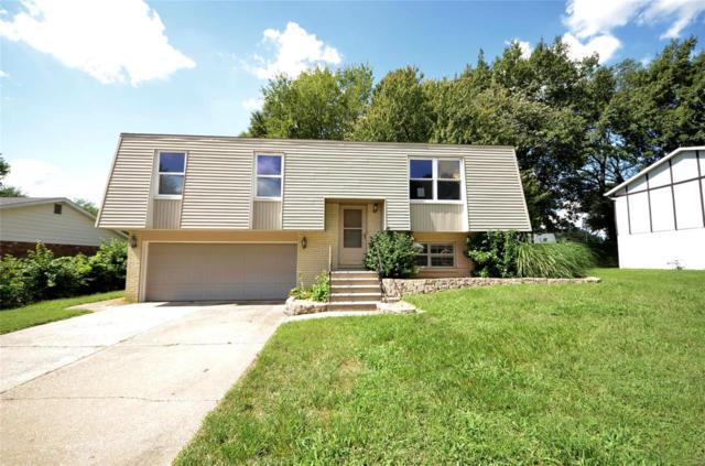 117 Las Olas Drive, Belleville, IL 62221 (#18073398) :: Fusion Realty, LLC