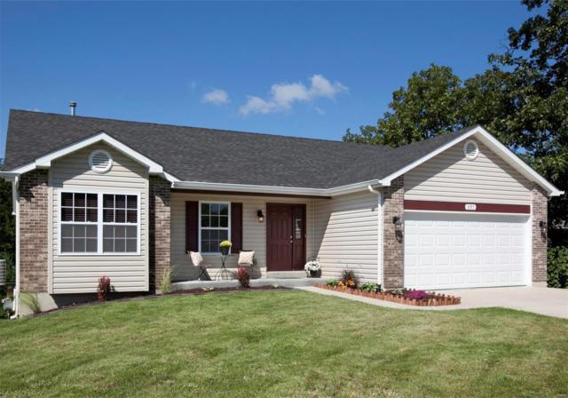 397 Shadow Pines Drive, Wentzville, MO 63385 (#18073525) :: Kelly Hager Group | TdD Premier Real Estate