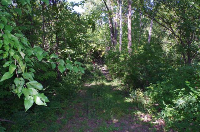 503 Kelly Lane, Louisiana, MO 63353 (#18074182) :: The Becky O'Neill Power Home Selling Team