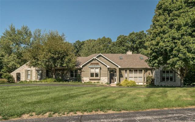 2917 Country Point Court, Wildwood, MO 63038 (#18074308) :: Kelly Hager Group | TdD Premier Real Estate