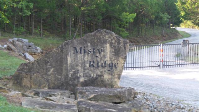 1 Misty Ridge, Eureka, MO 63025 (#18074326) :: Clarity Street Realty