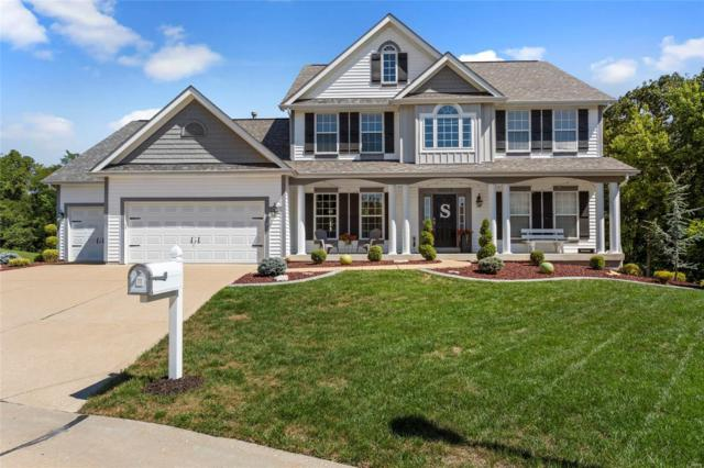16203 Lakeshore Meadows Court, Wildwood, MO 63038 (#18074331) :: Kelly Hager Group | TdD Premier Real Estate